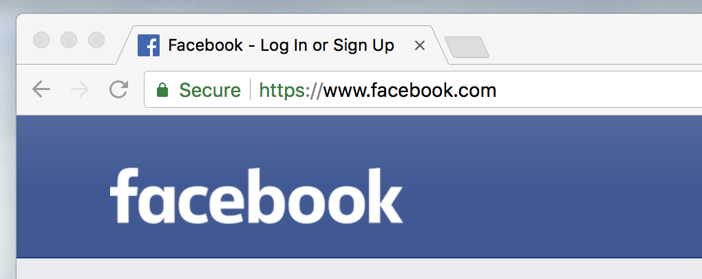 Website Tip: Considering the recent Facebook privacy news, how secure does my website need to be?